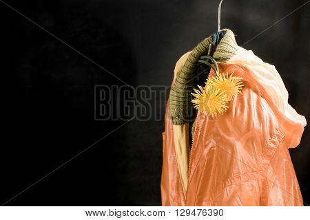 Female Apparel On Hanger