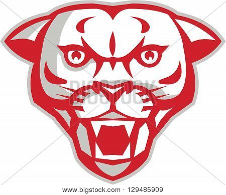 Illustration of an angry cougar mountain lion head showing fangs viewed from front set on isolated white background done in retro style.