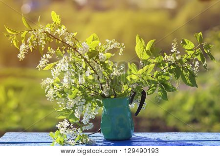 branches of fragrant cherry stand in a metal jug on the bench in the spring