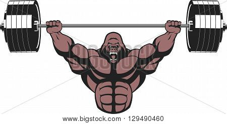Vector illustration strong ferocious gorilla performs an exercise with a barbell over his head