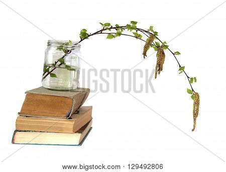 birch twig with flowering catkins in a glass jar on a pile of old books blossoming branch of catkins willows close up in early spring isolated elements on white background for scrapbook object