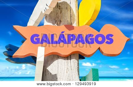 Galapagos signpost with beach background
