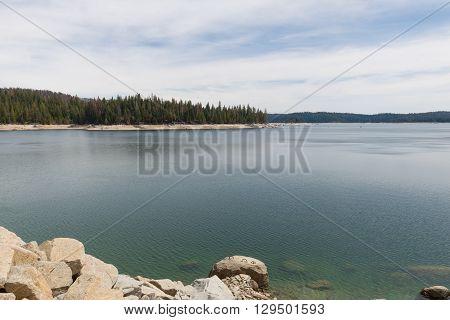 Shaver Lake Shoreline