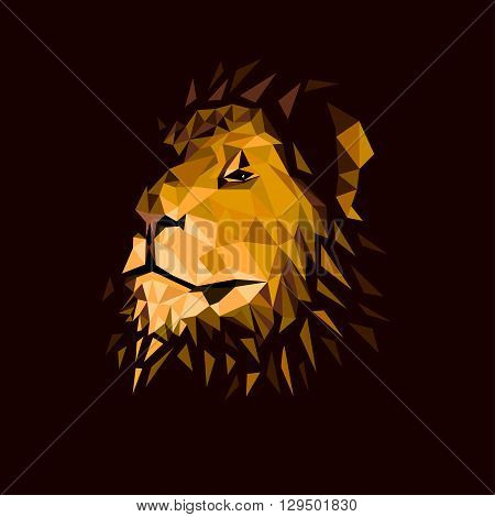 vector illustration of a lion's head on a dark background
