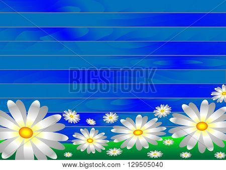 Vectors white flowers on the grass on a wooden background from blue boards.