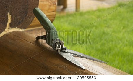scissors for cutting the lawn with a green pen