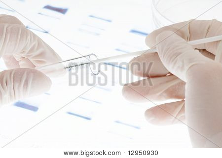 Dna Sample