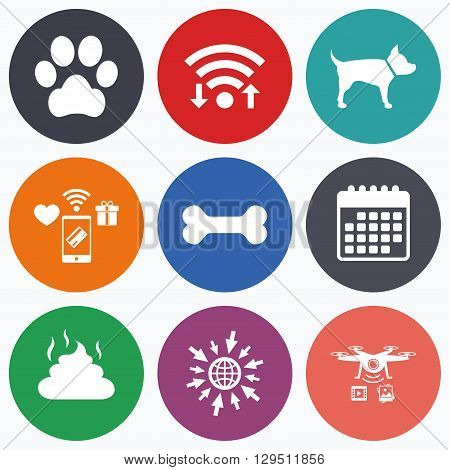 Wifi, mobile payments and drones icons. Pets icons. Dog paw and feces signs. Clean up after pets. Pets food. Calendar symbol.