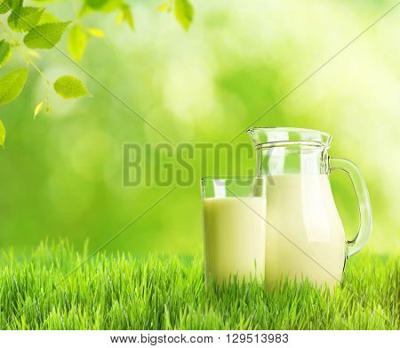 Milk in glassware on green nature background