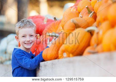 positive smiling boy choosing pumpkin and enjoying pumpkin patch