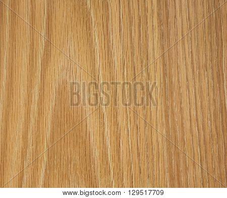 oak wood texture