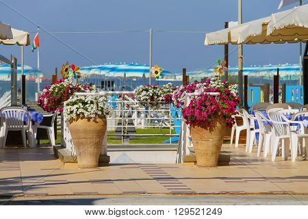 Decorative vases with flowers at the entrance to beach zone in Viareggio Italy