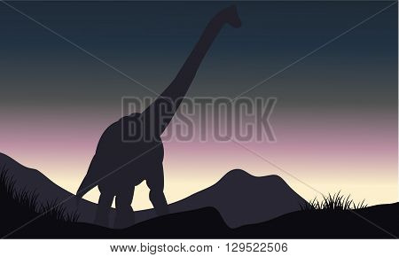 Silhouette of single brachiosaurus in hills at the morning