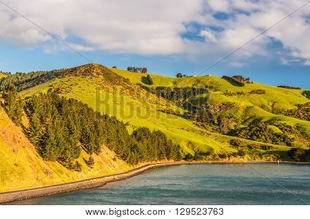 New Zealand coastal landscape - A happy sunny day at Otago Region Southern island New Zealand