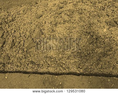 Field Soil Sepia