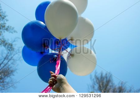 Balloons    Fly Up Into The Blue Sky.