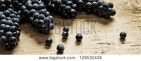 Panorama size lots of blue grapes on wooden table concept wine and grape juice