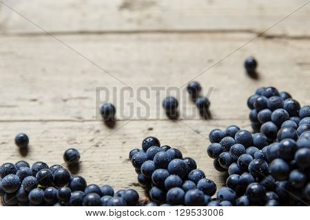 A lots of blue wine grapes on a old wooden table copyspace for your own text