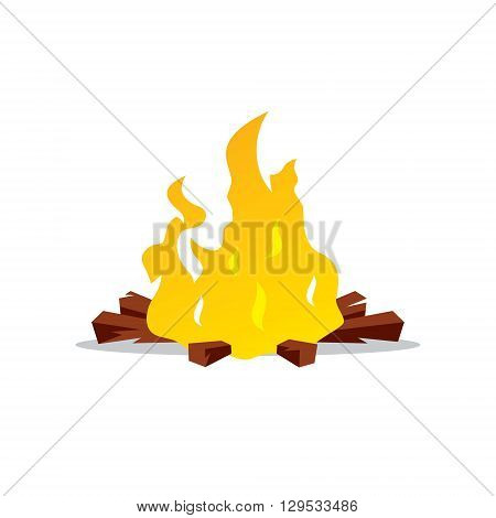 Burning firewood Isolated on a White Background