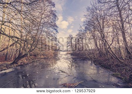 Ice On A River In The Forest