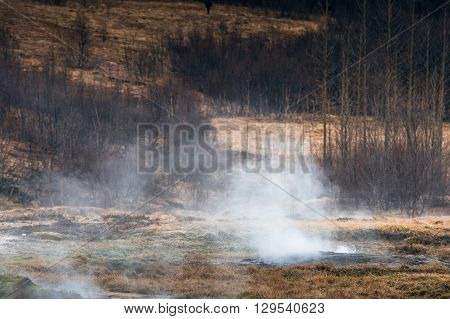 Boiling Water On A Field In Iceland