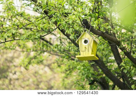 Green birdhouse hanging from tree with foliage blurred in background