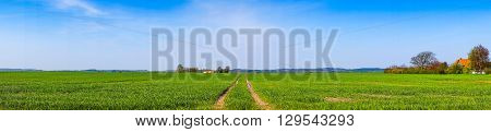 Tracks On A Field In Panorama Landscape
