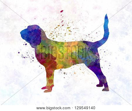 Bloodhound dog in artistic abstract watercolor background