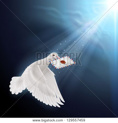 Pigeon flying with letter in beak in sunlight