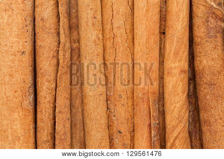 Organic Cinnamon sticks (Cinnamomum verum). Macro close up background texture. Top view.