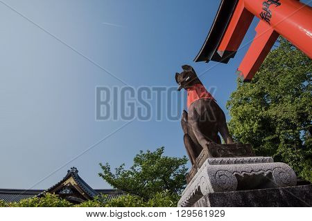 fox statue in fushimi inari shrine japan
