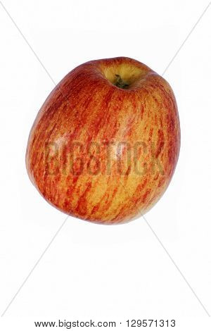 Cameo apple (Malus domestica Cameo). Hybrid between Red Delicious apple and Golden Delicious apple probably. Image of apple isolated on white background