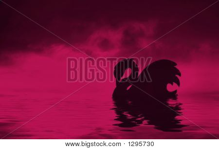 Swan  Silhouette Abstract