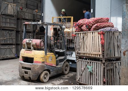 Saint-Petersburg Russia - April 15 2016: car loader loads the crates of potatoes in a container in a warehouse which stored potatoes