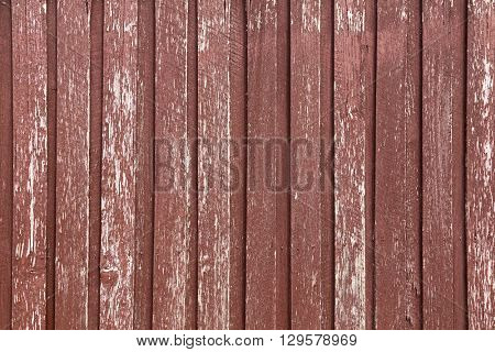Closeup background texture photo of rustic weathered barn wood in red brown and white