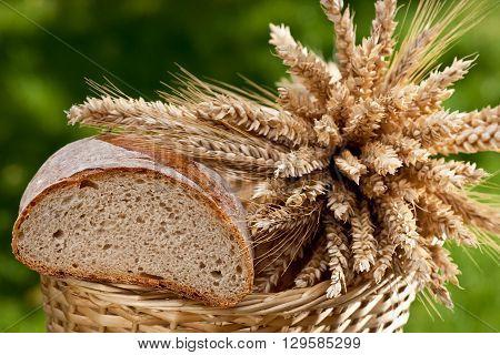 bread and sheaf of wheat and barley