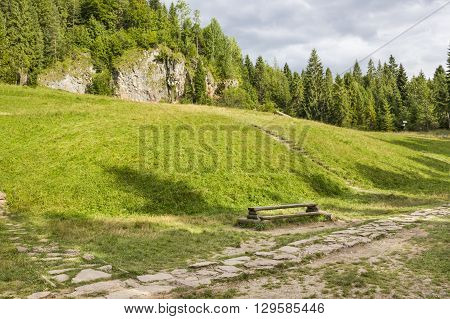 Green trail in ravine Homole in Pieniny Mountains, Poland