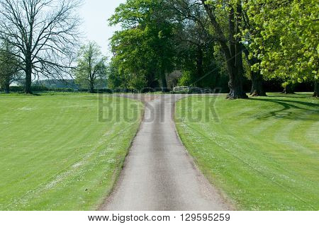 Narrow road through a meadow in the sunny countryside