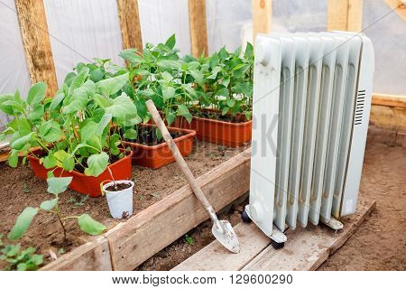 Electric oil heater in the greenhouse with seedlings of plants, planting in early spring during the cold weather.