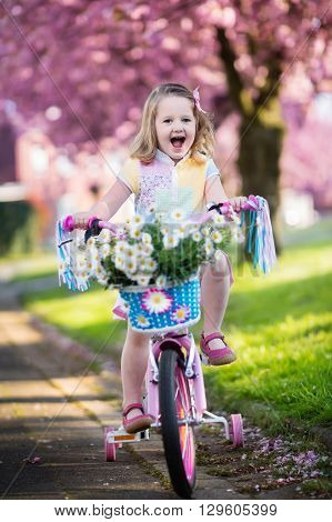 Child riding a bike on a street with blooming cherry trees in the suburbs. Kid biking outdoors in urban park. Little girl on pink bicycle. Healthy preschool children summer activity. Kids play outside