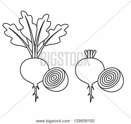 Line icon beet with leaves and half of beet and beet without leaves and with half of beet. Vector illustration.