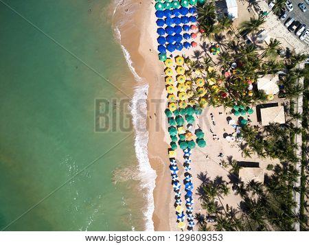 Top View of Guarajuba Beach, Bahia, Brazil