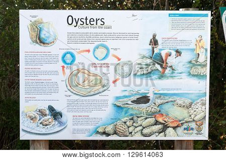KNYSNA SOUTH AFRICA - MARCH 5 2016: An information board at the beach in Noetsie describing the life cycle and different species of oyster on the coast of South Africa
