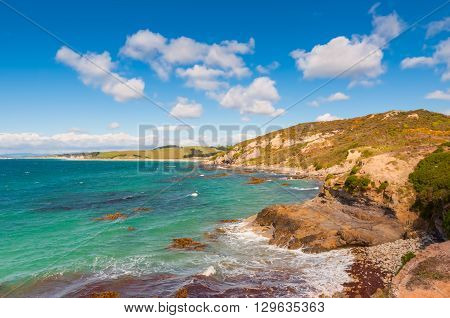 New Zealand coastline landscape - A happy sunny day at Otago Region Southern island New Zealand