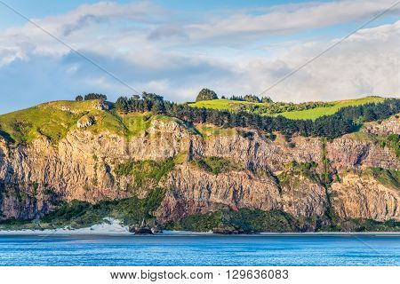 Rocky cliff face with bush and meadows on top at New Zealand coast near Dunedin at Otago Region Southern island - cloudy sky
