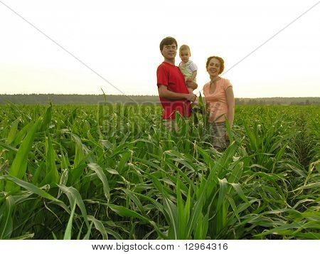 family in sondown field