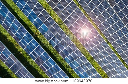 Power plant using renewable solar energy with sun meadow