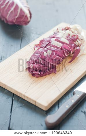 radicchio di Treviso red cut on a wooden cutting boarditaly