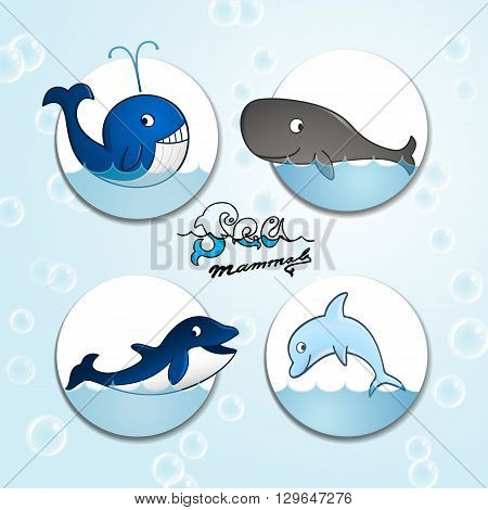 A set of cartoon sea mammals including a whale a dolphin a killer whale and a cachalot