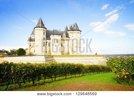 Saumur castle and vineyards  in the Loire Valley, France, retro toned
